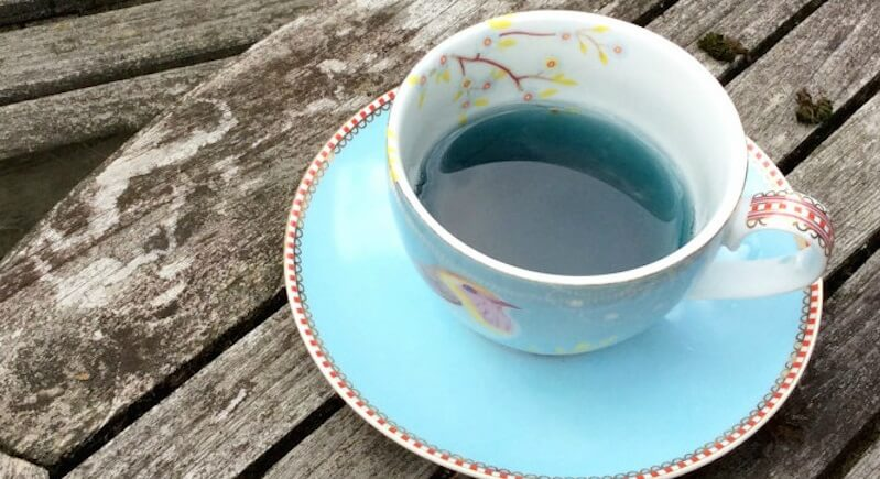 Blue Tea This Herbal Tea That May Help In Weight Loss