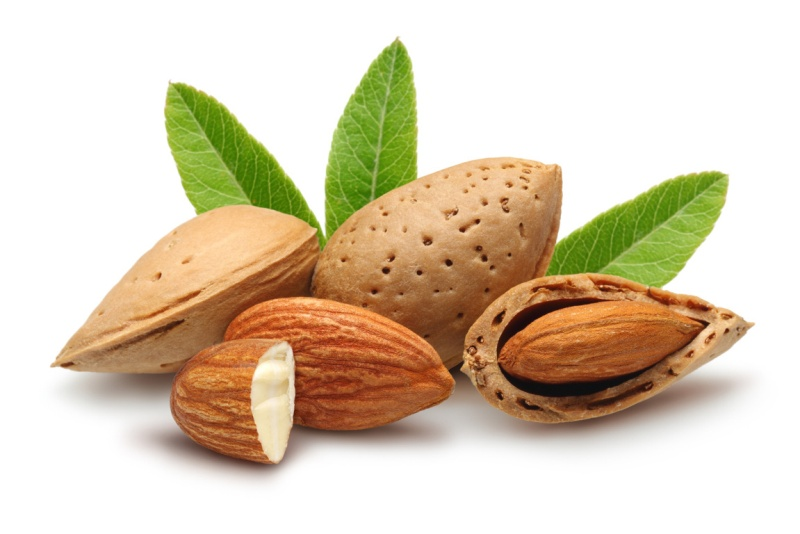 Reasons behind Why You Should Include More Almonds In Your Life